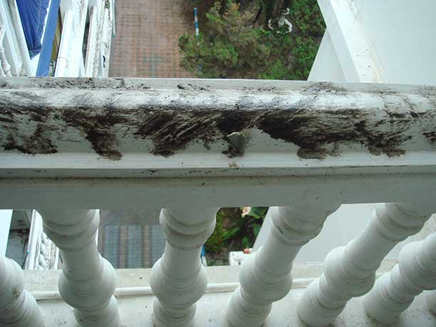 sticky black goo on railing